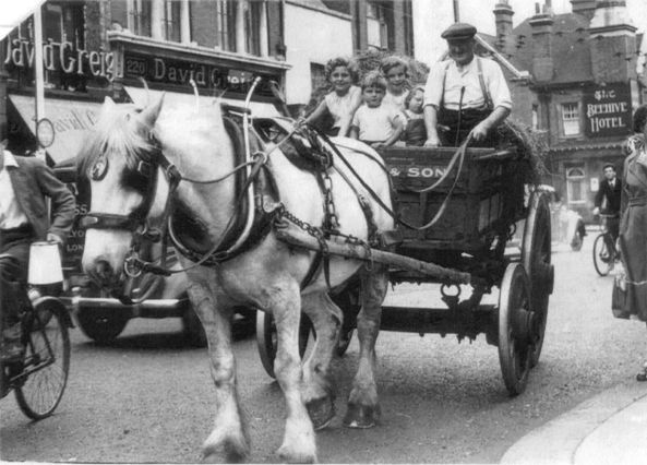 B/w photo of horse and cart with 4 small children on board, a pile of hay behind, being driven along the High Street